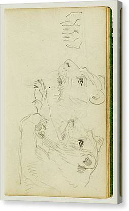 Studies Of The Head And Forelegs Of A Lioness Théodore Canvas Print by Litz Collection