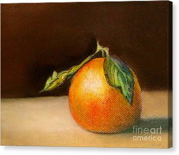 Study Of A Tangerine Canvas Print