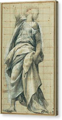 Study Of An Apostle Bernardino Gatti, Italian Canvas Print by Litz Collection