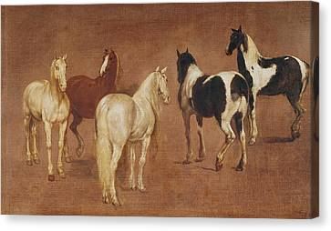 Study Of Five Horses Oil On Canvas Canvas Print