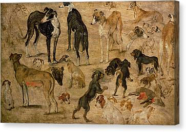 1616 Canvas Print - Study Of Hounds, 1616 by Jan the Elder Brueghel
