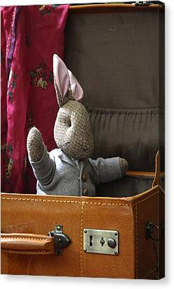 Stuffed Bunny In A Suitcase Canvas Print