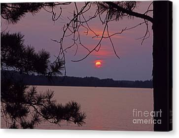 Sturgeon Lake Mn Sunset Canvas Print