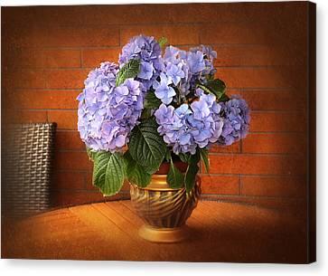 Stylish Hydrangea Canvas Print