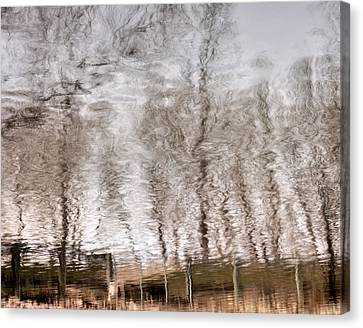 Subdued Reflection Canvas Print by Steven Milner