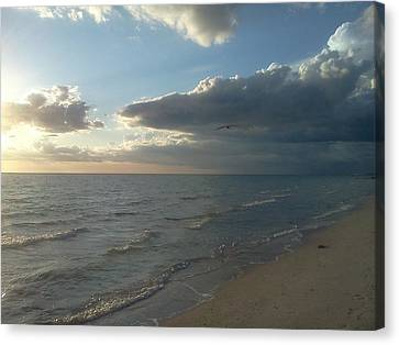 Subdued Sunset Canvas Print by K Simmons Luna