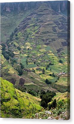 Subsistence Farming In Simien Mountains Canvas Print by Tony Camacho