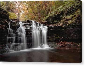 Subtle Fall Hues At Wyandot Falls Canvas Print by Gene Walls