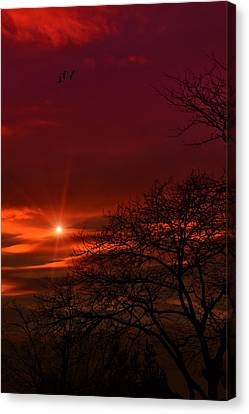 Suburban Skies Canvas Print by Tom York Images