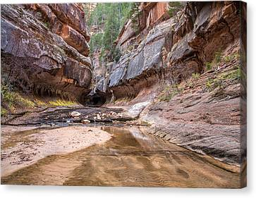 Subway Entrance In Zion National Park Backcountry Canvas Print by Pierre Leclerc Photography