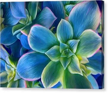 Succulent Blue On Green Canvas Print