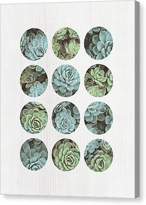 Succulent Dots Canvas Print by Tammy Apple