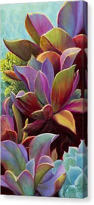 Succulent Jewels Canvas Print by Sandi Whetzel