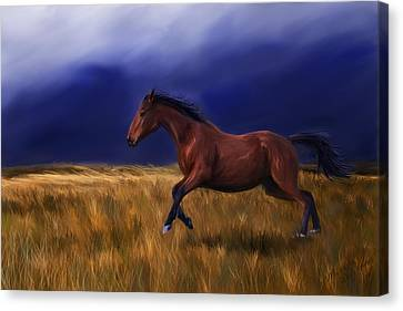 Bay Horse Canvas Print - Galloping Horse Painting by Michelle Wrighton