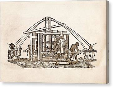 Sugar Cane Mill Canvas Print by Middle Temple Library