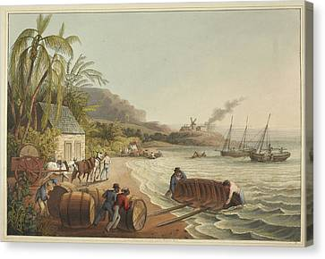 Sugar-hogsheads Canvas Print by British Library