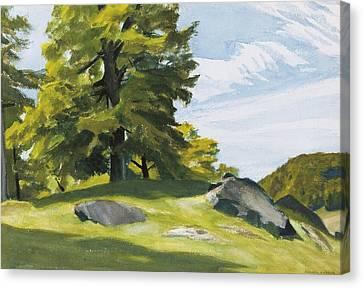 Sugar Maple Canvas Print