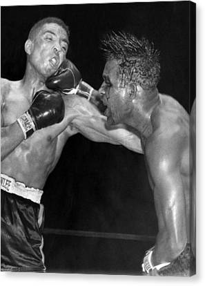 Sugar Ray Throws A  Right Canvas Print by Underwood Archives