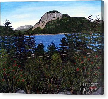 Sugarloaf Hill Canvas Print by Barbara Griffin