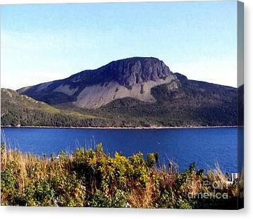 Canvas Print featuring the painting Sugarloaf Hill In Summer by Barbara Griffin