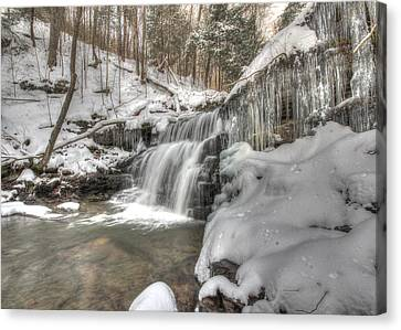 Sullivan Run Waterfall 3 Canvas Print by Lori Deiter