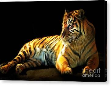 Sumatran Tiger 20150210brun Canvas Print by Wingsdomain Art and Photography
