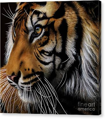 Sumatran Tiger Profile Canvas Print by Jurek Zamoyski