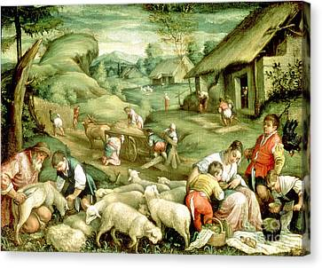 Summer, 1570-80 See Also 65685 Canvas Print by Francesco Bassano