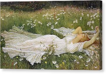 Daisy Canvas Print - Summer, 1895 by Walter Crane