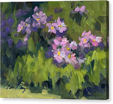 Summer Asters Canvas Print by Diane McClary