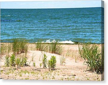 Summer At The Beach Canvas Print by Heather Allen
