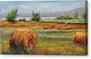 Summer Bales Canvas Print