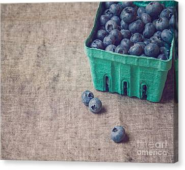 Summer Blueberries Canvas Print by Bethany Helzer