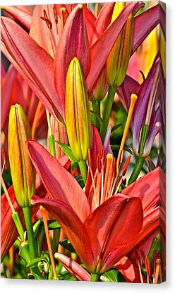 Summer Bouquet Canvas Print by Frozen in Time Fine Art Photography