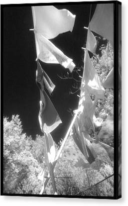 Summer Breezes Canvas Print