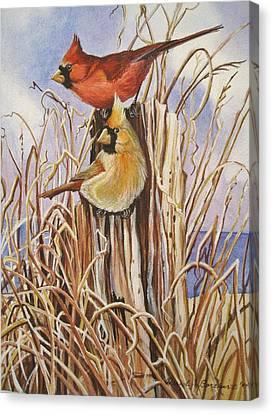 Summer Cardinals Canvas Print by Cheryl Borchert