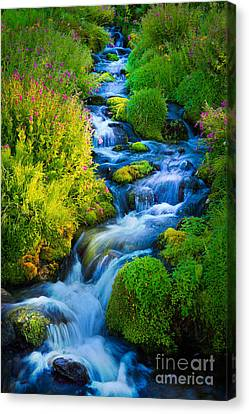 Summer Cascade Canvas Print by Inge Johnsson