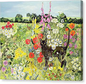 Foxglove Flowers Canvas Print - Summer Cat by Hilary Jones