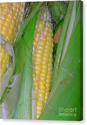 Summer Corn Canvas Print