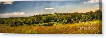 Summer Countryside Canvas Print by Elena Elisseeva