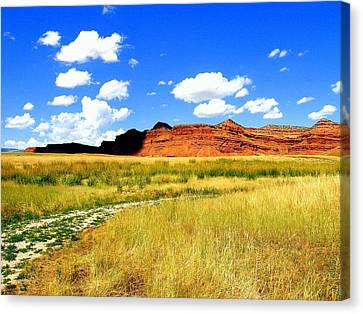 Canvas Print featuring the photograph Summer Day On Ranch Land by Antonia Citrino