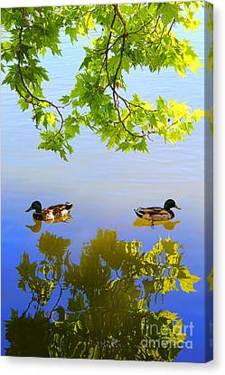 Summer Day On The Lake Canvas Print by Mariola Bitner