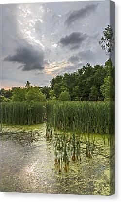 Summer Evening Clouds Canvas Print