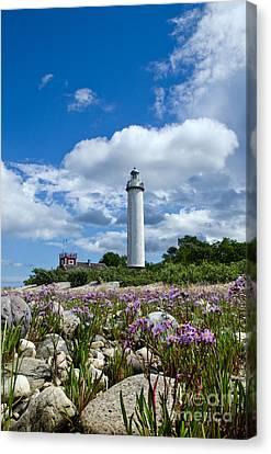 Canvas Print featuring the photograph Summer Flowers At Lighthouse by Kennerth and Birgitta Kullman
