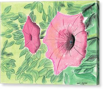 Summer Flowers Canvas Print by David Jackson