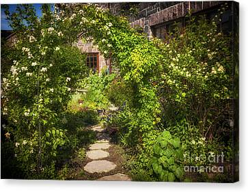 Summer Garden And Path Canvas Print by Elena Elisseeva