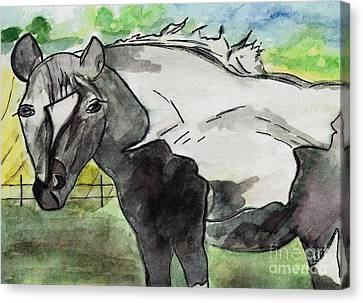 Summer Gaze Canvas Print by Elizabeth Briggs