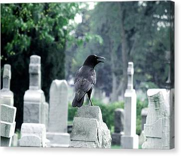 Summer Graveyard Canvas Print by Gothicrow Images