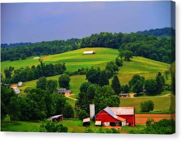 Amish Family Canvas Print - Summer Green In Berlin Ohio by Dan Sproul