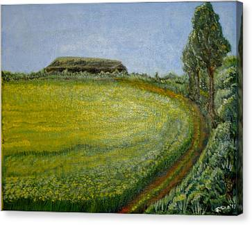Summer In Canola Field Canvas Print by Felicia Tica